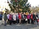 Zájezd do Rakuska a adventní Bratislavy